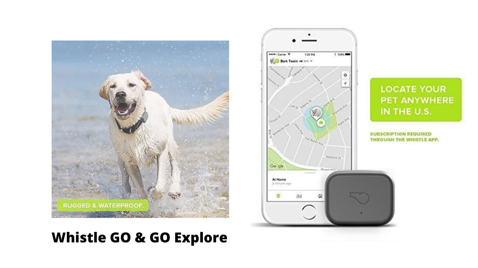 best-tracking-device-Whistle Go Go Exporer