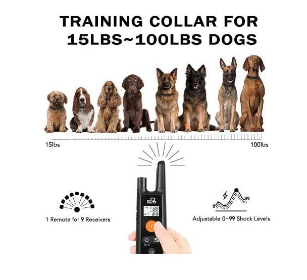 DOG CARE Remote Training
