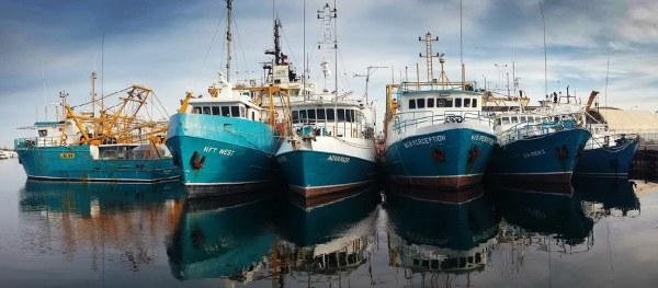 Vessel Monitoring Software
